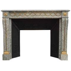 French Louis the 16th Marble and Gilded Bronze Fireplace, 19th Century