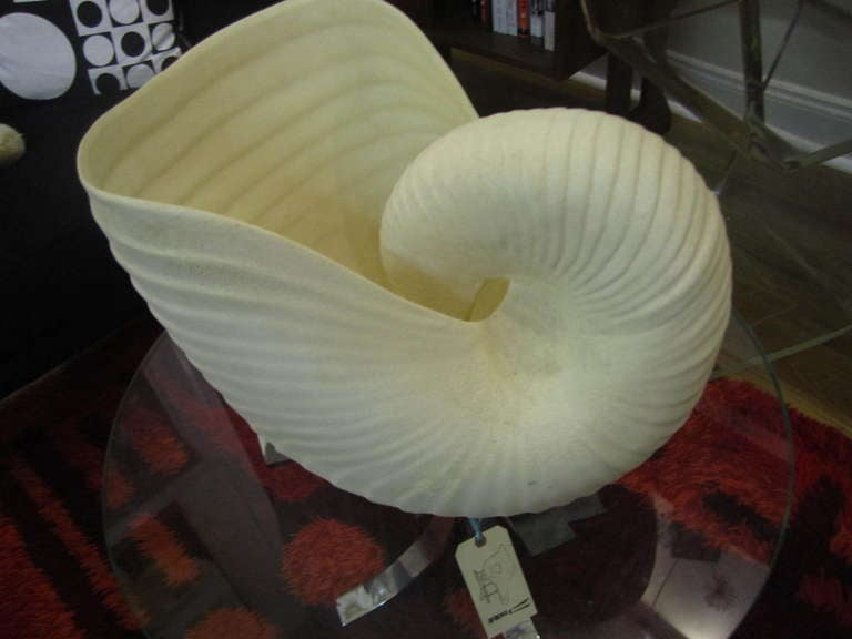 Outrageous Large Sea Shell Cache Flower Pot Regency Mid-century Modern image 5