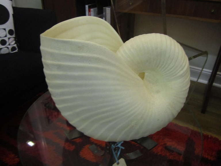 Outrageous Large Sea Shell Cache Flower Pot Regency Mid-century Modern image 2
