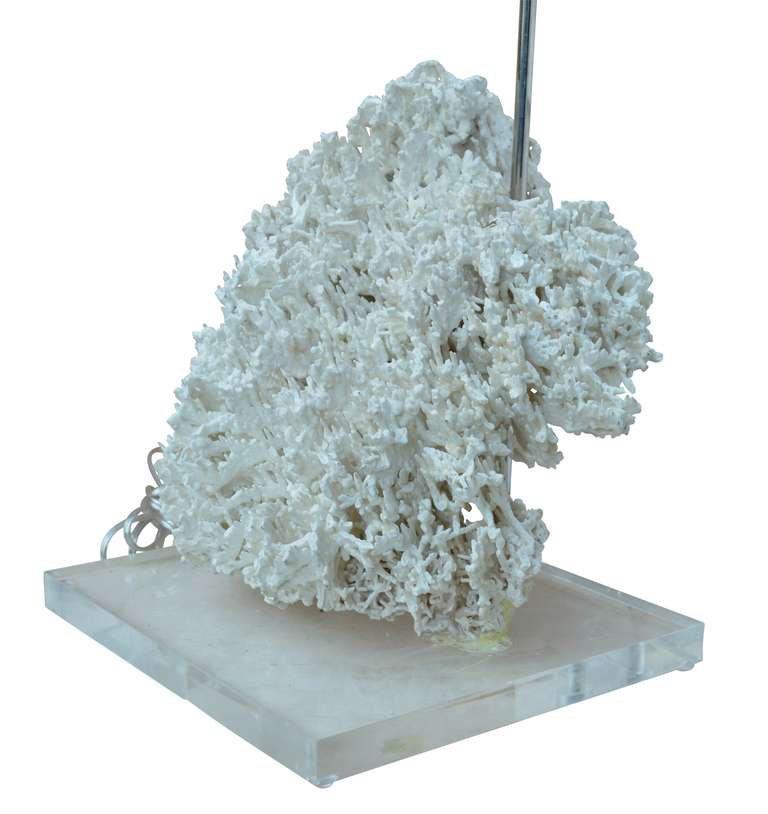 American Coral Lamp on Lucite Base For Sale