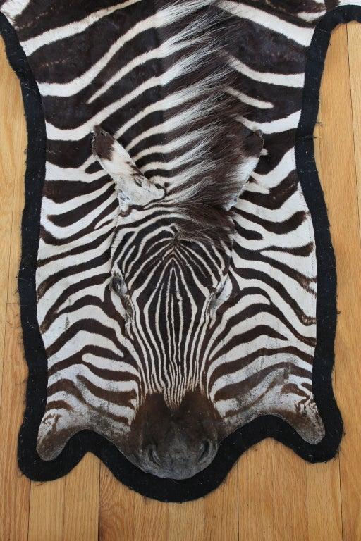 African Zebra Skin Rug Or Wall Hanging At 1stdibs