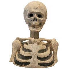 19th Century Odd Fellows Paper Mache Skeleton Bust