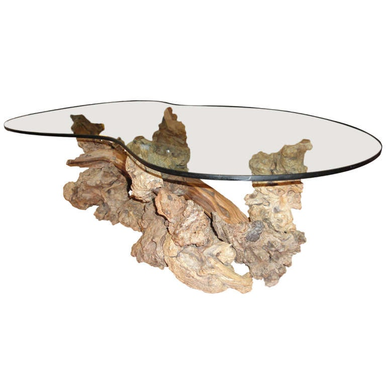 Driftwood Coffee Table With Glass Top At 1stdibs