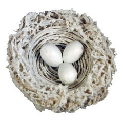 Antique Bristol Hard Paste Biscuit Porcelain Bird's Nest & Eggs