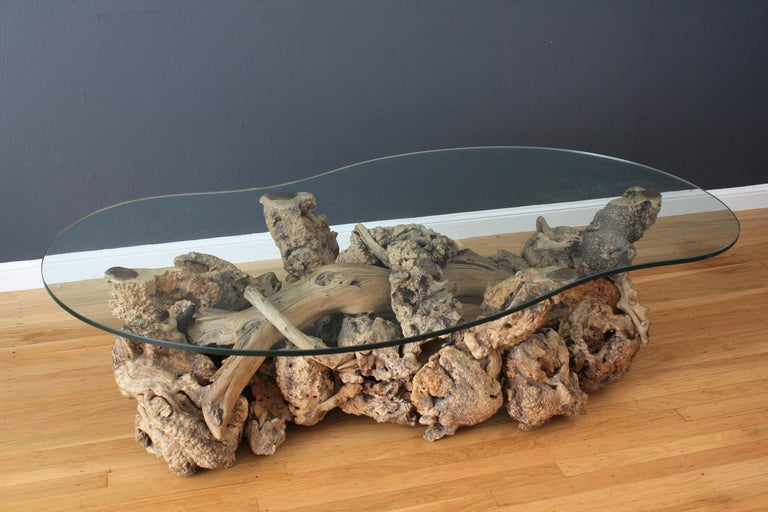 Vintage mid century driftwood coffee table at 1stdibs for Driftwood coffee table