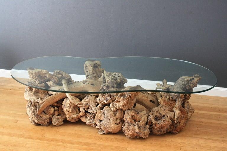 Vintage MidCentury Driftwood Coffee Table at 1stdibs