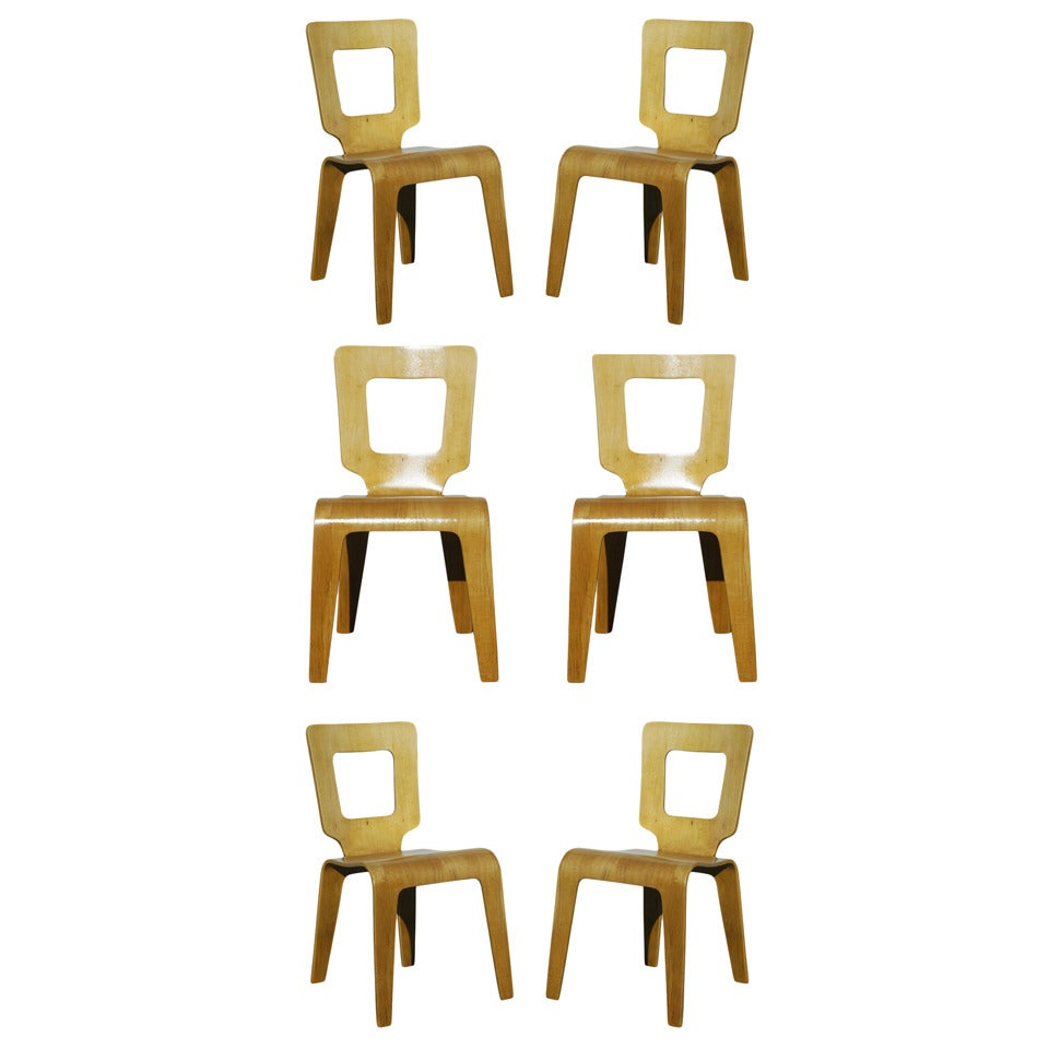 Set of Six Bent Plywood Side Chairs by Thaden-Jordan Furniture **Sature Sale** For Sale