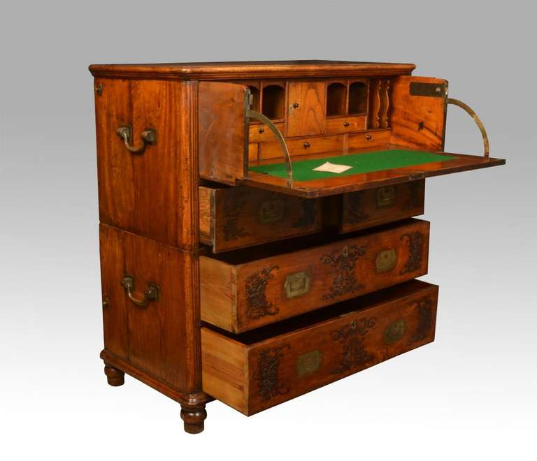 Chinese camphor wood secretaire campaign chest for sale at