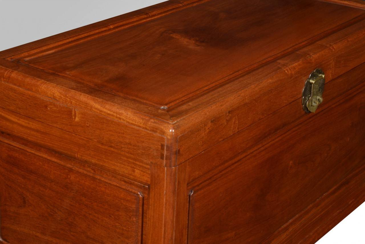 Chinese Export Camphor Wood Trunk Coffee Table 3