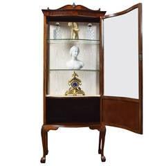 Edwardian mahogany Single Door Display Cabinet