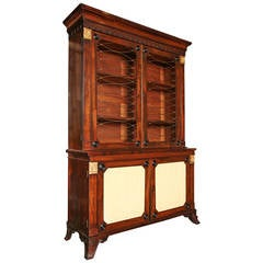 Early 19th Century English Regency Two-Door Bookcase with Storage Underneath
