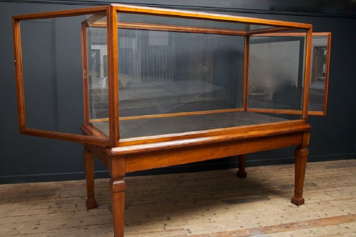 Ten Large Museum Display Cases At 1stdibs