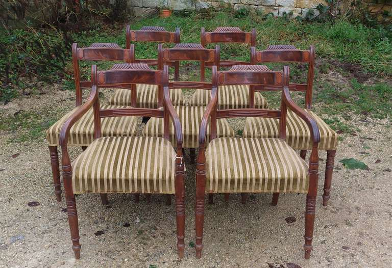 Regency Set of 8 Mahogany Antique Dining Chairs For Sale