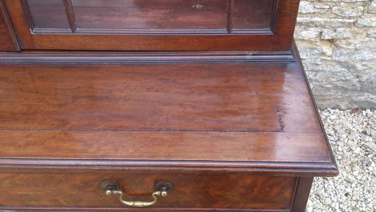 Small 19th Century Antique Bookcase with Flame Mahogany Doors In Excellent Condition In Gloucestershire, GB