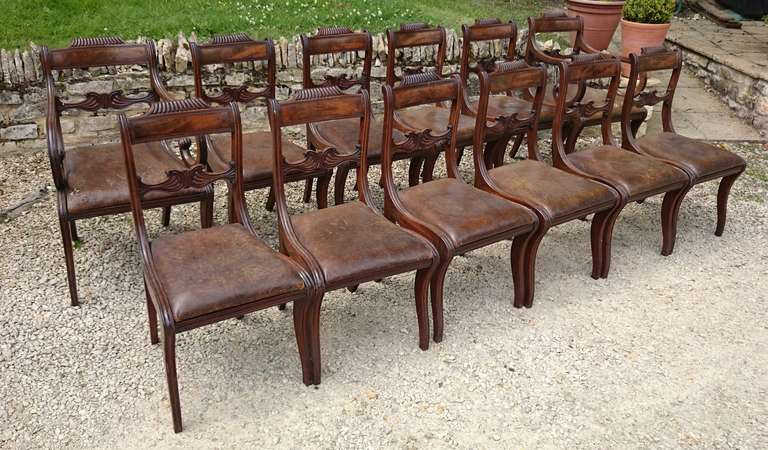 Charmant British 13 Regency Mahogany Antique Dining Chairs For Sale