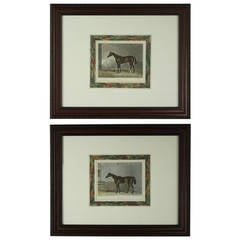 Pair Of English Hand-colored Antique Horse Engravings