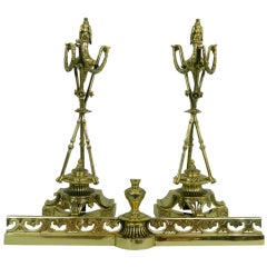 Pair of Chenets or Andirons with a Decorative Eagle Finial Top, 19th Century