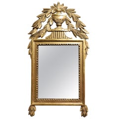 French Gilded, Painted, Carved and Crested Wood Mirror, 19th Century