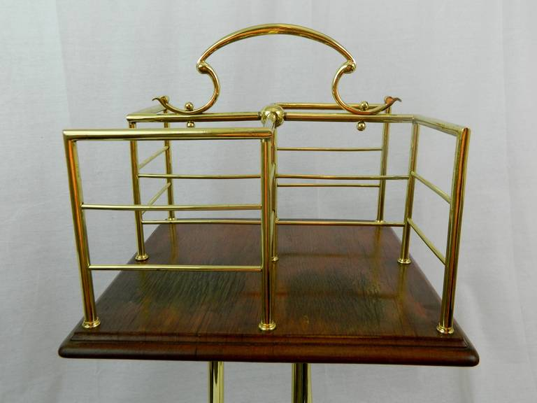 19th Century English Revolving Mahogany and Brass Book Stand or Side Table For Sale 5