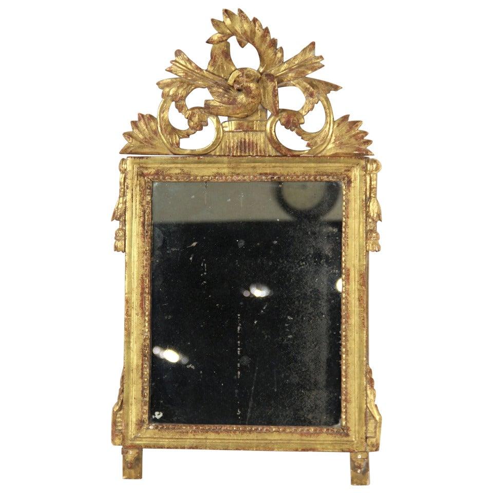 Circa 1800's Italian Neoclassical Gilt Wood Mirror