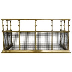 19th Century French Polished Brass Mesh Fire Fender