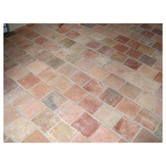 "French Antique Terracotta Floors ""Pare-Feuille"" 18th-19th Century, France"