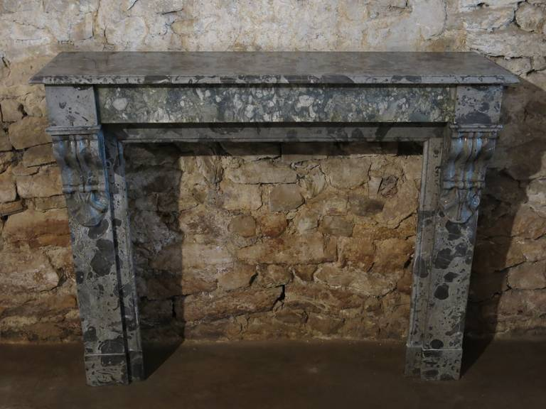 French Parisian Napoleon Iii Marble Fireplace From Paris