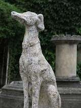 "Greyhound Dog ""Levrier"" in Stone 20th Century France image 5"