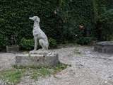 "Greyhound Dog ""Levrier"" in Stone 20th Century France image 7"