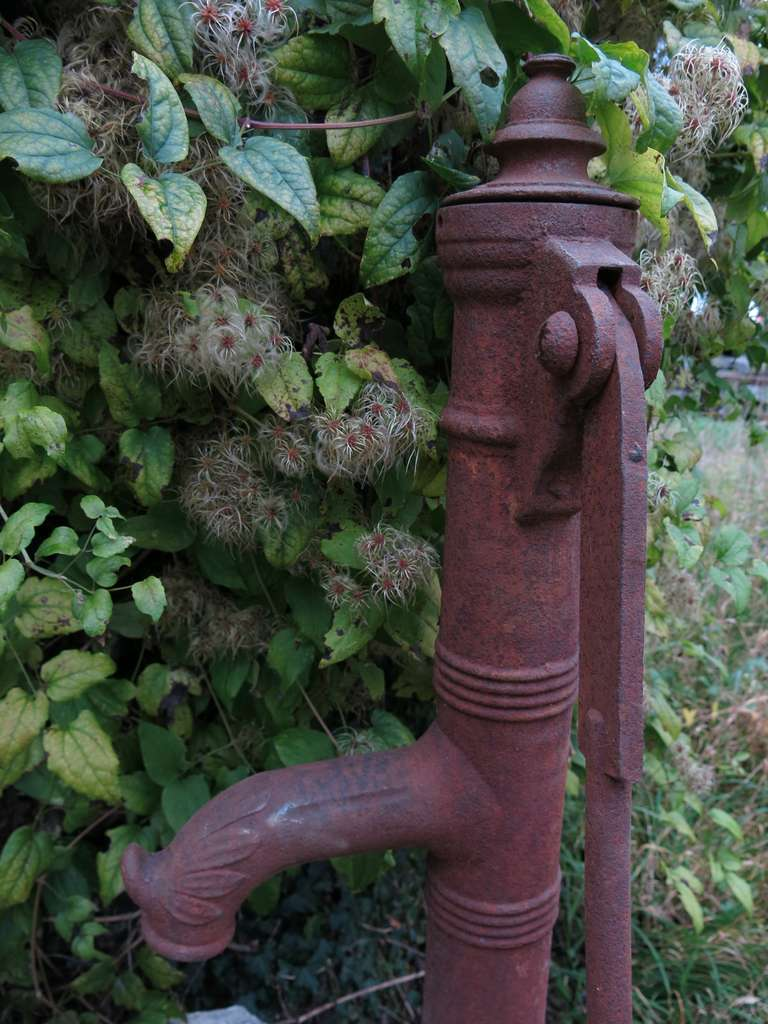 Village Water Pump in antique limestone from France 18/19th Century For Sale 2