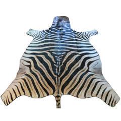Zebra Hide Rug With Black Leather Trim
