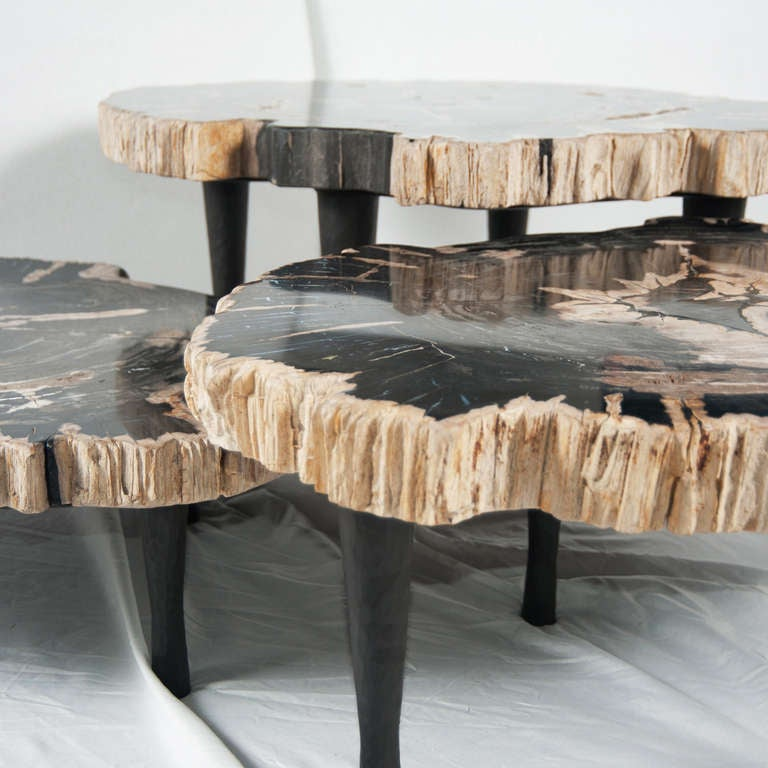 cluster of petrified wood matching tables at 1stdibs