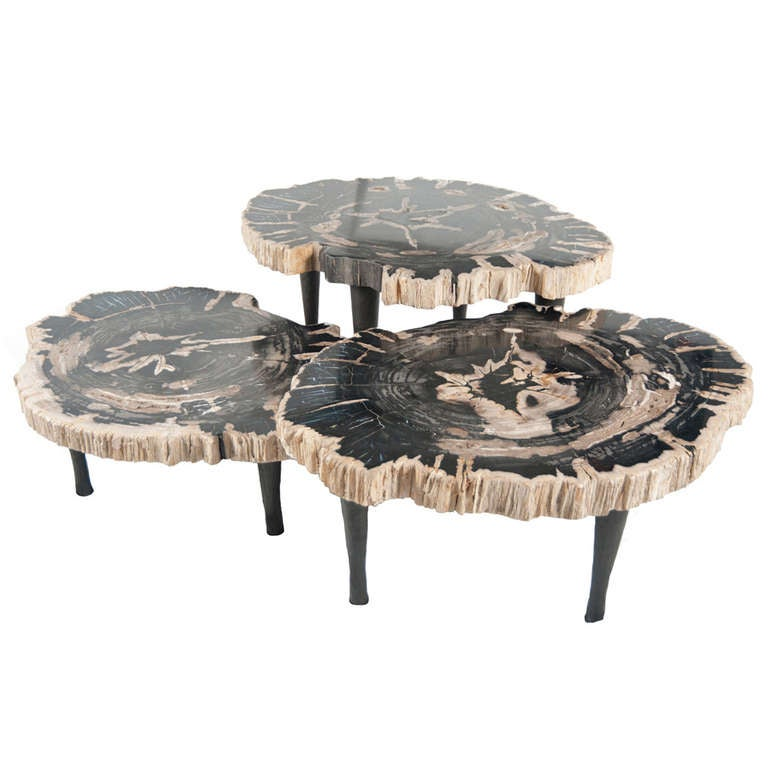 Group Of Petrified Wood Tables At 1stdibs