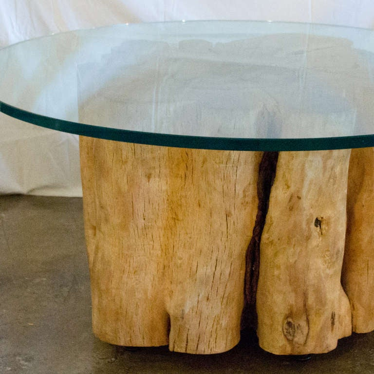 A Full Trunk Base Glass Top Coffee Table At 1stdibs