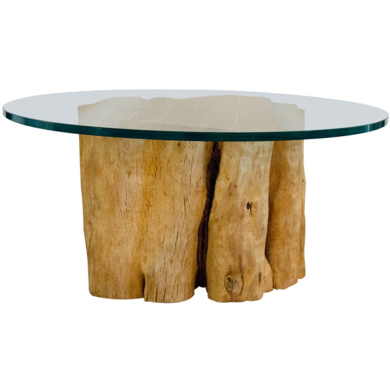Full Trunk Base Glass Top Coffee Table At 1stdibs