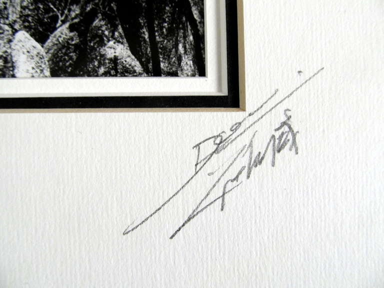 Pencil Signed Original Photograph by Don Hong Oai 2