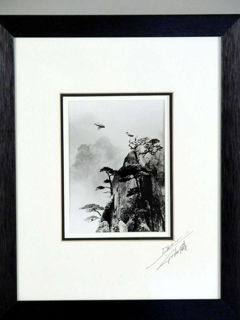 Pencil Signed Original Photograph by Don Hong Oai 4