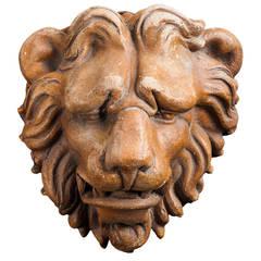 20th Century Terracotta Lion Head
