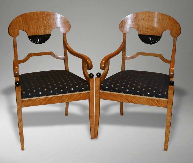 A fine pair of Biedemier style satin birchwood armchairs  The plume shaped top rail extending to midway between the stiles, terminating in a black ebonized fan shaped splat, above a stepped stretcher. The scrolling arms supported on C scrolls with
