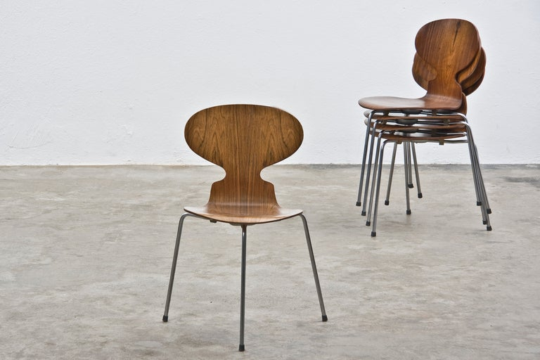 Arne jacobsen rosewood ant chairs 6 at 1stdibs for Chaise fourmi jacobsen