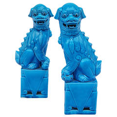 Pair of Pho Dogs Sculptures in Blue Porcelain, circa 1900