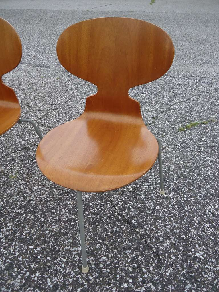 Rare Set of Six Arne Jacobsen Ant Chairs with Drop-Leaf Table For Sale 4