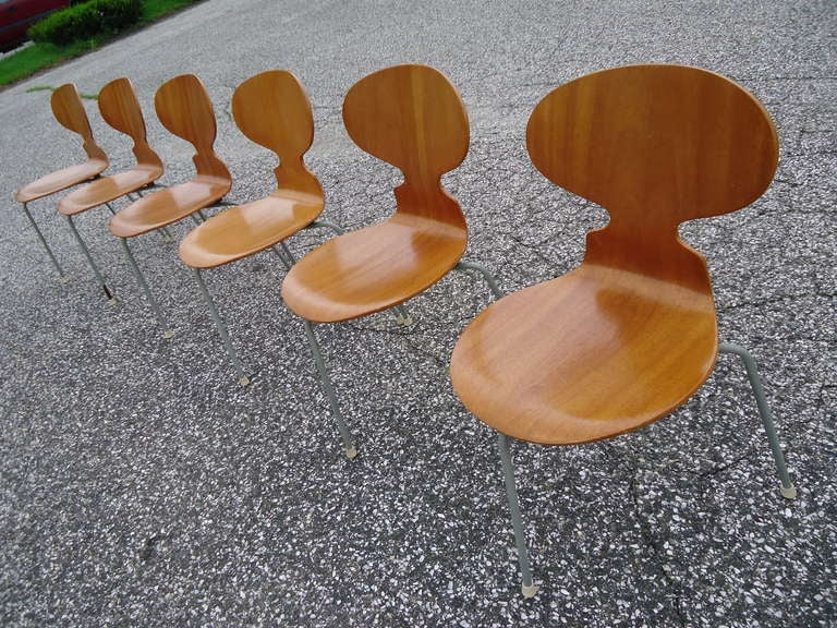Rare Set of Six Arne Jacobsen Ant Chairs with Drop-Leaf Table For Sale 2