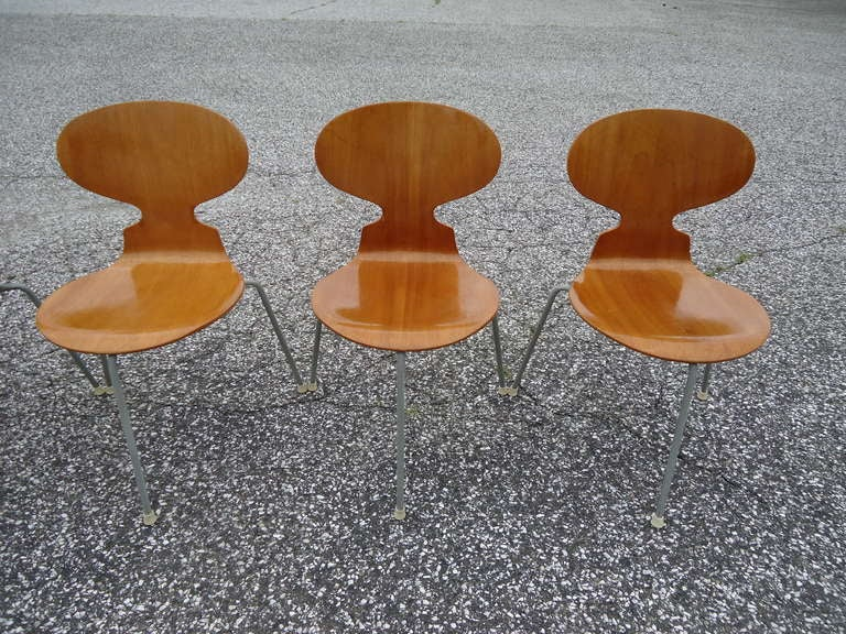 Rare Set of Six Arne Jacobsen Ant Chairs with Drop-Leaf Table For Sale 3