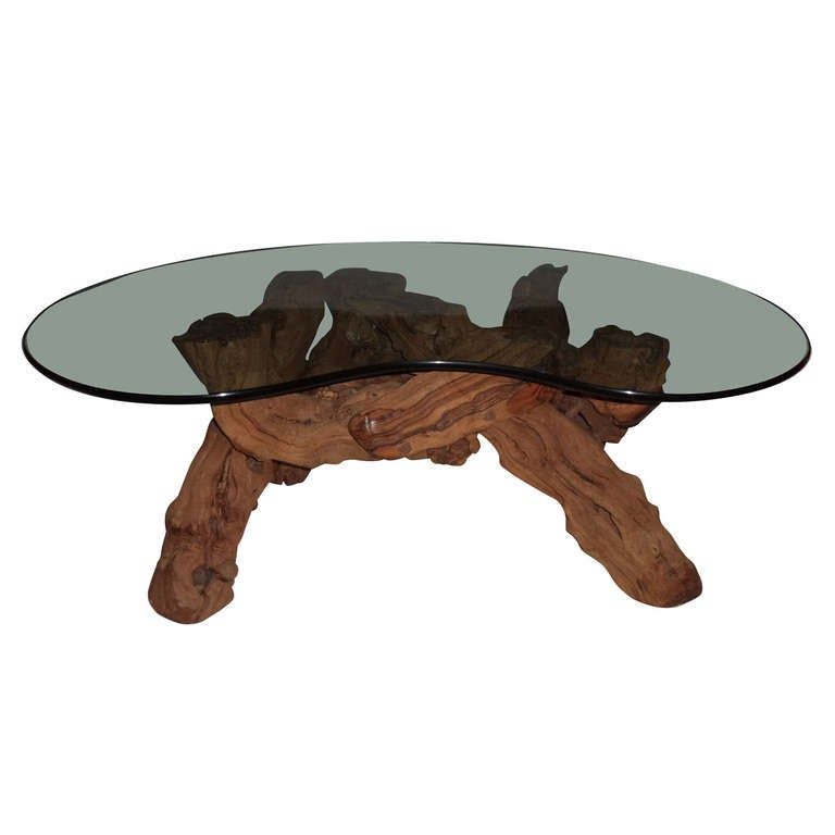 Cypress Root Driftwood Coffee Table With Smoked Glass Top For Sale
