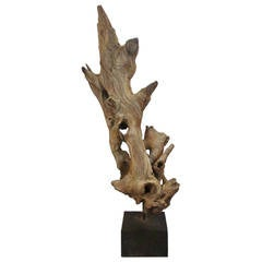 Large American Natural Driftwood Sculpture