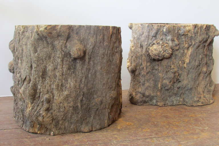 Burl Tree Trunk Table Bases For Sale 1