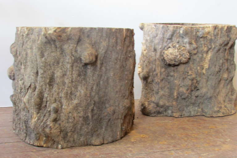 Burl Tree Trunk Table Bases For Sale At 1stdibs