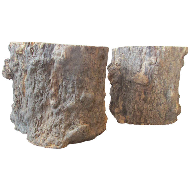 burl tree trunk table bases 1