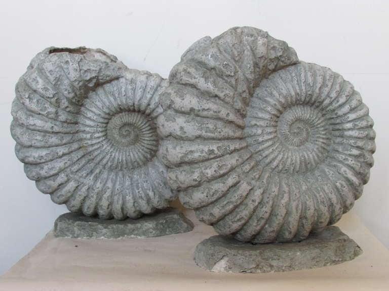 Giant ammonite nautilus fiberglass sculptures at 1stdibs for Nautilus garden designs